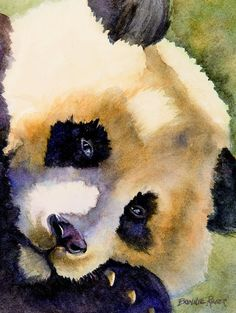 Panda Cub Painting by Bonnie Rinier - Panda Cub Fine Art Prints and Posters for Sale