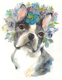 Animals Images, Cute Animals, Illustration Inspiration, Boston Terrier, Terrier Puppies, Bull Terriers, Bulldog Puppies, Gifts For Pet Lovers, Dog Portraits