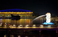 night view of Merlion Park in Singapore