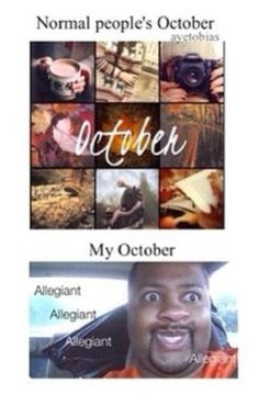And my November is all about catching fire! ~Divergent~ ~Insurgent~ ~Allegiant~