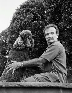 poodles robin williams arthur grace photos - A new photo book, Robin Williams: A Singular Portrait, captures the late comedian from every angle. Robin Williams, I Love Dogs, Cute Dogs, Poodle Cuts, Poodle Grooming, Dog Grooming, Dog Life, Dog Mom, Dog Breeds