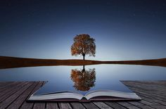 Tree reflection in the book - by Bessi