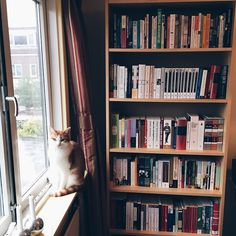 esarkaye: Some more of my books, plus my cat.