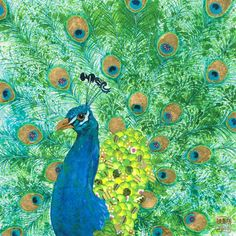 Peacock by Chris Chun.