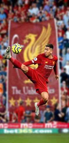 Liverpool Players, Fc Liverpool, Liverpool Football Club, Soccer Players, Football Soccer, This Is Anfield, Smocking Patterns, Football Wallpaper, Extreme Sports