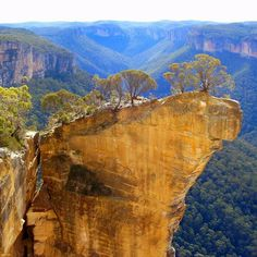 Blue Mountains of New South Wales.