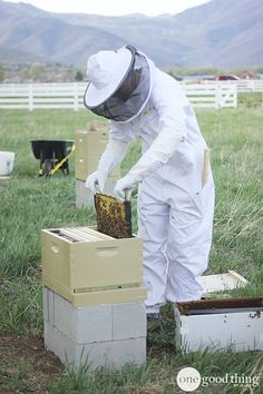 I live in Utah…the Beehive State. So I guess it's not surprising that I am now officially a beekeeper. Of course there's a little more to the story than that. My nephew Nate recently became enamored with the whole beekeeping phenomena and his enthusiasm is always contagious! :-) After he regaled me with stories about …