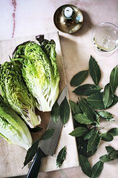 Gem lettuce - Suvi sur le vif | Lily.fi