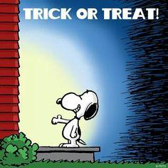 peanuts halloween - snoopy trick or treat Halloween Items, Halloween Pictures, Dog Halloween, Halloween Night, Happy Halloween, Charlie Brown Y Snoopy, Snoopy Love, Snoopy And Woodstock, Peanuts Cartoon