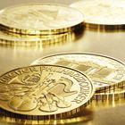 Anlegen mit Münzen von Münze Österreich Coins, Personalized Items, Gold Bullion Bars, Silver, Rooms