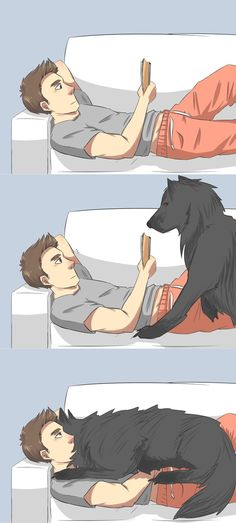 Perfect Wolf Bed by torakodragon on deviantART