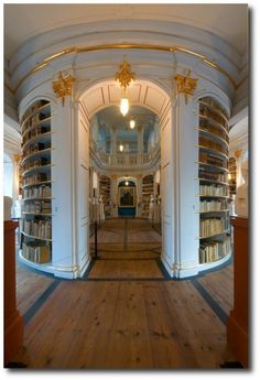 Anna Amalia Library, Rococo Decoration, 18th century style, 18th century decorating, Rococo, rococo art, baroque and rococo, Rococo architecture, rococo furniture, rococo style,