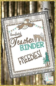 Start building your teacher binder today! Here are several planning pages including covers, scheduling pages, and miscellaneous pages to get you started! Forest Classroom, Classroom Setup, Kindergarten Classroom, Future Classroom, Classroom Libraries, Teacher Binder Covers, Teacher Binder Free, Teacher Freebies, Teacher Blogs