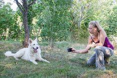 Koivukumpu: Kuinka ottaa parempia kuvia puhelimella? Vinkit blogissa. Photo And Video, Dogs, Animals, Animales, Animaux, Animal Memes, Animal, Pet Dogs, Dog