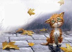 рыжий кот под дождем: 16 тыс изображений найдено в Яндекс.Картинках