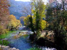 Fontaine-de-Vaucluse1-Jeux-de-lumieres-a19394570.jpg (1000×750) #green #vert #tourismpaca #tourismepaca #landscape #paysage #Provence #Vaucluse #trees #arbres #river #riviere