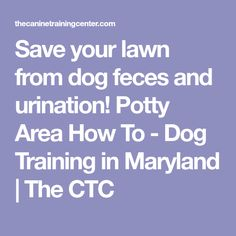 Save your lawn from dog feces and urination! Potty Area How To - Dog Training in Maryland The CTC Potty Training Tips, Training Your Dog, Toilet Training, Raising Kittens, Dog Toilet, Dog Potty, Dog Area, Dog Runs, Outdoor Dog