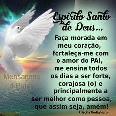 Espirito+Santo+de+Deus.png (550×550)