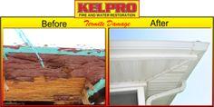Termite Damage, Restoration, Fire, Water, Gripe Water