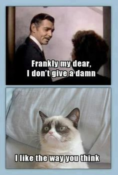 Grumpy Cat. Frankly my dear... Rhett Butler. Gone with the Wind.