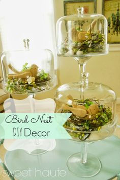 Bird Nest Glass Dome Decor inexpensive spring craft, easy, cute DIY project you can make for spring and easter using sea shells, garland, and cake domes- SWEET HAUTE Pin now.....read later!!Bird Nest Glass Dome Decor {SWEET}   |   ♡ LOVELOVELOVE!!!  ♥A