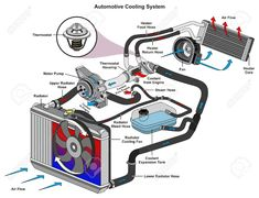 Automotive Cooling System infographic diagram showing process and all parts included radiator hoses coolant flow thermostat fan tank and air flow for mechanic and road traffic safety science education Stock Vector - 87963547 Refrigeration And Air Conditioning, Toyota Corona, Automobile, Automotive Engineering, Radiator Hose, Cooling System, Buggy, Car Engine, Engine Block