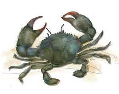 Beach Inspired Crab Art - Yahoo Image Search Results