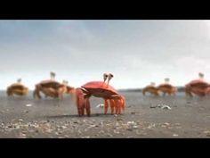 De Lijn Commercial - Crabs