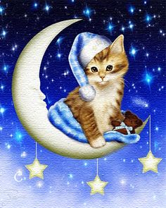 Good Night Friends, Good Night Wishes, Good Morning Good Night, Good Night Quotes, Cute Kittens, Cute Drawings, Animal Drawings, I Love Cats, Cool Cats