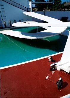 Lubetkin Arup, Penguin Pool - as it should be - with penguins Bamboo Architecture, Modern Architecture Design, Penguin Pools, Sound Installation, Large Artwork, Pedestrian Bridge, Amazing Buildings, Built Environment, Urban Landscape