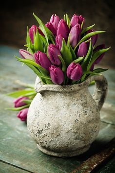 morados by natalia-klenova tulipanes morados by natalia-klenova tulipanes morados by natalia-klenova iPhone backgrounds by color New flowers roses boquette birthday vase 56 Ideas Spring flowers in a tin jug by RuthBlack