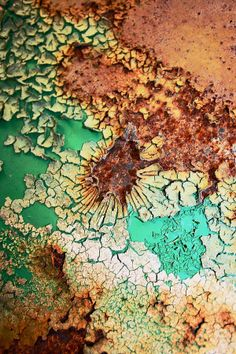 """Center of Attention"" by Lynne Prestebak Description: Abstract macro shot of peeling paint Abstract Photography, Macro Photography, Gouts Et Couleurs, Art Grunge, Foto Macro, Peeling Paint, Rusty Metal, Texture Art, Sea Texture"