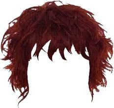 Rock Star Hairstyles Png Google Search