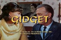 Gidget - (1965-66). Starring: Sally Field, Don Porter, Betty Conner, Pete Duel and Lynette Winter. Partial Guest Cast: Paul Lynde, Harvey Korman, Dick Wilson, Richard Dreyfuss, Bonnie Franklin, Peggy Rea, Walter Koenig, Daniel J. Travanti, Ron Rifkin and Frank DeVol.