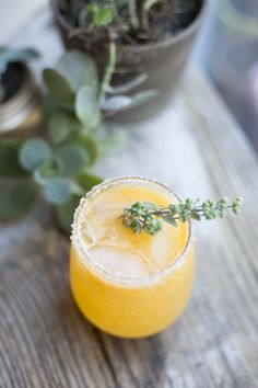 Sunny Winter Cocktail | The Sweetest Occasion  Juice of 3 clementines  1 oz triple sec  1 oz tequila  Sprig of marjoram  Clementine wedge for garnish  Pinch of cayenne pepper  Salt