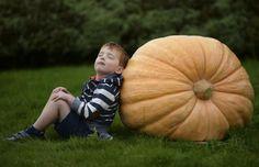 4 year old Orton of Harrogate poses for photographs with a giant pumpkin during the first day at the Autumn flower show in Harrogate | 12 imágenes sorprendentes de frutas y verduras gigantes en el mundo - Yahoo Noticias España
