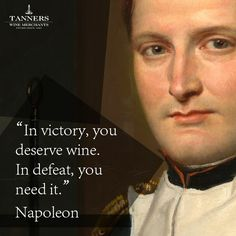 """""""In victory, you deserve wine. In defeat, you need it."""" - Napoleon (Wine Quote)"""