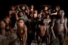 Migrace, velké míšení druhů, trochu neuspořádaná evoluce. Nové vědecké objevy bourají představu lidského vývoje jako lineárního pohybu od jednoho homo ke druhému. Spíš ve stejnou dobu žily a potkávaly se různé druhy a poddruhy, a právě jejich míšení umožnilo našim předkům osídlit celou planetu.