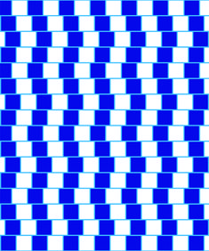 Skewed Checkerboard Illusion | 13 Psychological Mind Tricks That Will Mess With Your Head