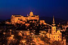 Buda castle view at blue hour :: photo by Richárd Sárközi Buda Castle, Blue Hour, Budapest, Cathedral, Building, Photos, Travel, Pictures, Voyage