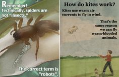 Amazing Little Known Nature Facts