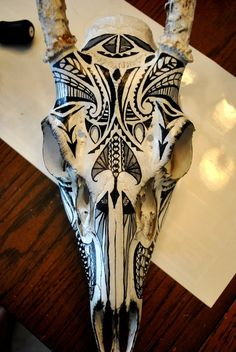 painted animal skull, I think I might start doing this.
