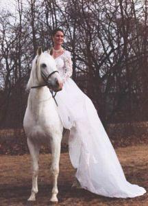 Weddings On White Horses Photos Quelles astuces pour organiser votre mariage sur http://yesidomariage.com