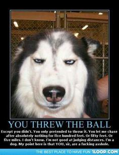 Tricking the dog hahaha!