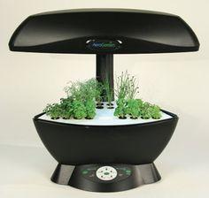 The Aerogarden Makes Indoor Gardening Easy With No Dirt 400 x 300
