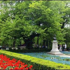 Teiul lui Eminescu Wonderful Places, Beautiful Places, Past, Fairy Tales, Sidewalk, Writers, Romania, Past Tense, Side Walkway