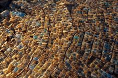 ASA | Aerial view of Beni Isguen, the most traditional village of Ghardaia, an oasis in the M'Zab region of the Algerian Sahara that has been declared a World Heritage Site by UNESCO.  The older buildings in the ancient city were constructed using only local stone, plaster, and wood from palm trees.