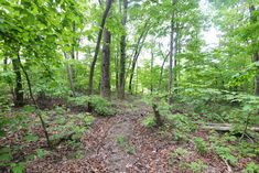 This large, wooded lot is 2.07 +/- acres and is at the end of a cul-de-sac in the Bluff Creek section of the established Fox Run community. This is one of 8 bluff lots overlooking the Fruedenberg Creek and the 44 acre Forever Wild Nature Preserve that is available for exclusive use by the residents. It is also close to Prentice Cooper State Park, so you can just imagine the tranquil sounds and scenes of this beautiful setting. Underground utilities also aid the natural feel of the…