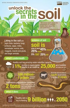 Soil Secrets Infographic from USDA. AgSource Laboratories can help you unlock further secrets to your soil through professional lab analysis. Don't Guess...Soil Test. http://agsource.crinet.com/page298/Agronomy