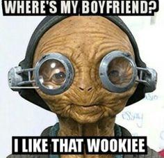i like that wookie mas - Yahoo Search Results Image Search Results Maz Kanata, Star Wars Quotes, Episode Iv, Original Trilogy, Star War 3, Bad Feeling, Last Jedi, Love Stars, Obi Wan